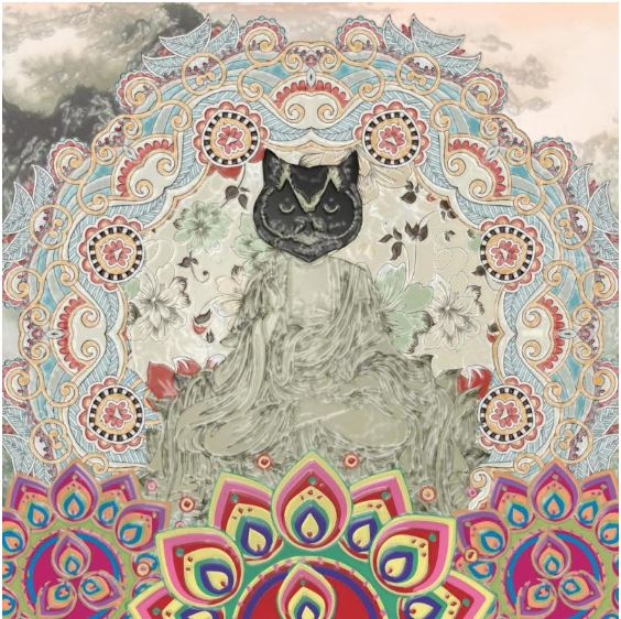 Gypsy Mamba - MagneticSyndromes